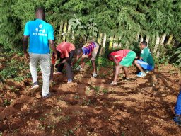 TTC Mururu students planting seeds
